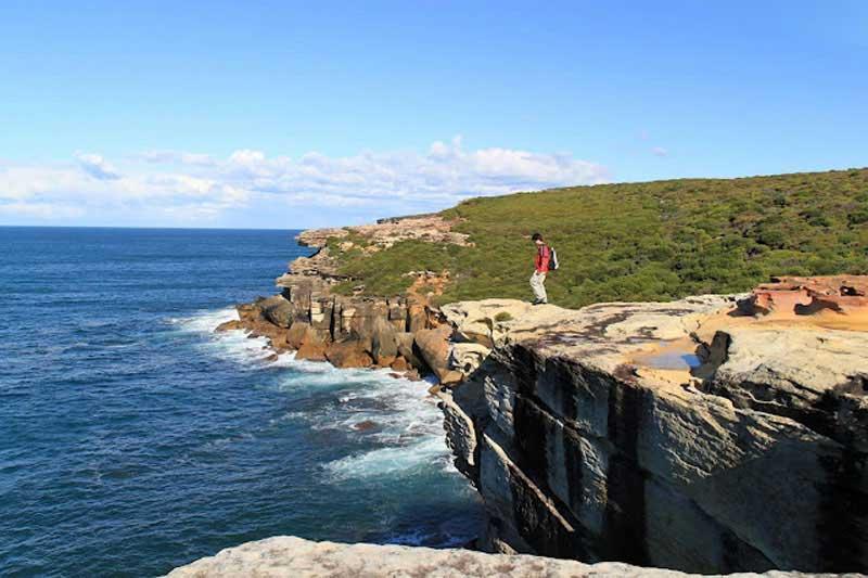 sydney royal national park history list - photo#24